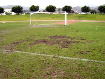 20070127130826-estadio-cesped-roto.jpg