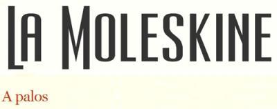 20090906182032-moleskine-a-palos.jpg