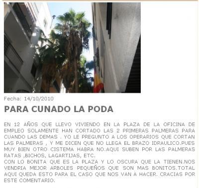 20111222185201-inem-palmeras-molestas.jpg