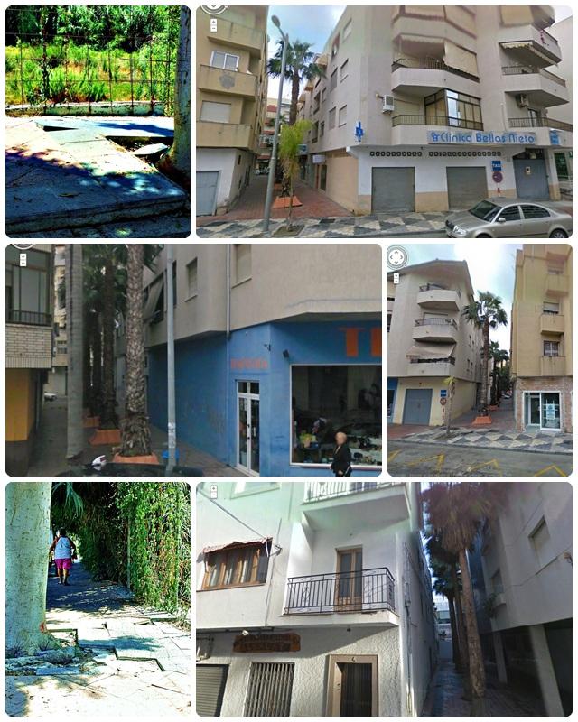 20111223172334-palmeras-molestas-y-losetas-levantadas.jpg
