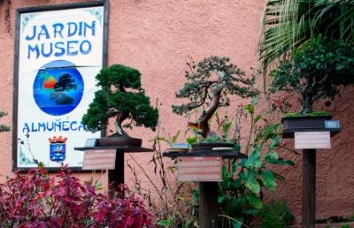 20130729120111-parque-bonsais-400.jpg