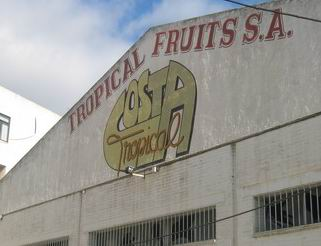 20070223193839-tropicalfruit.jpg