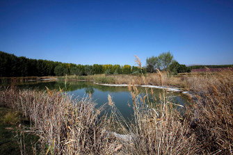 20111019171713-golf-medina-elvira.jpg