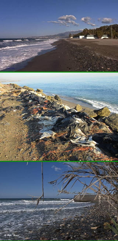 20120605192255-banderas-negras-2012.jpg